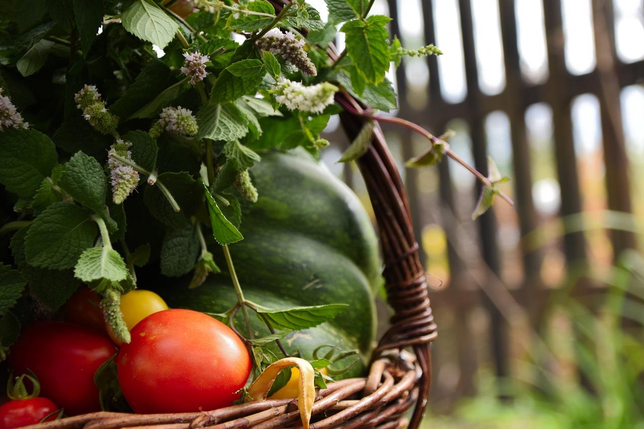 Les conseils culinaires des naturopathes