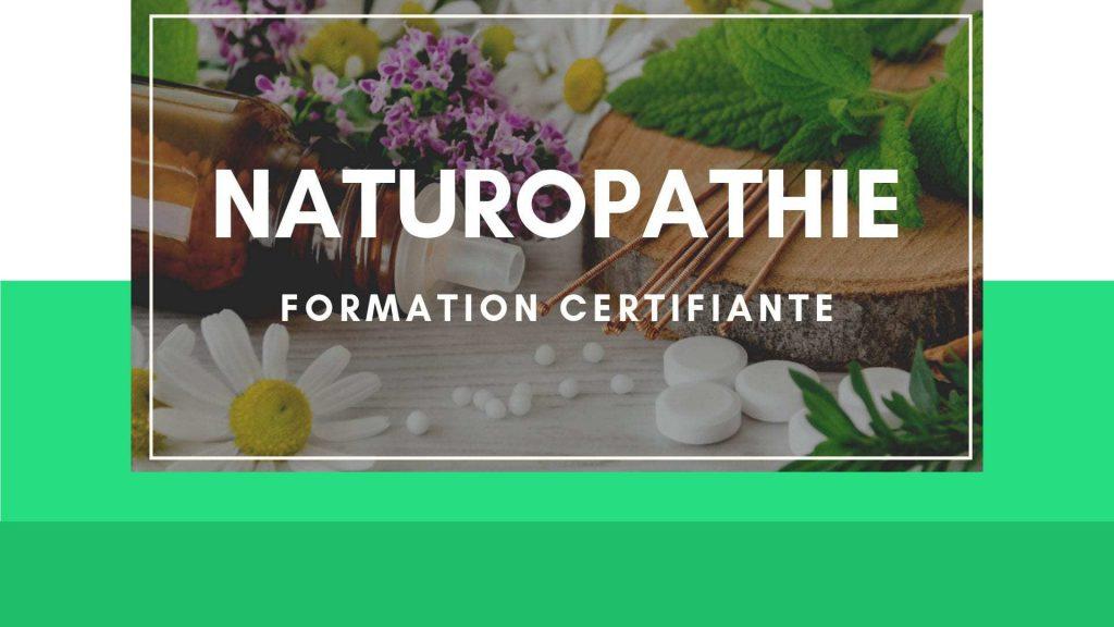 formation-naturopathie-en-ligne